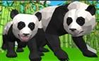 3D Panda Simülatörü