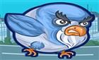 Bombacı Güvercin