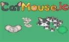 Cat Mouse io