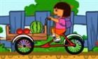 Dora Meyveleri Taşıma