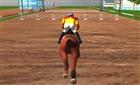 Engelli At Yarışı Şampiyonası