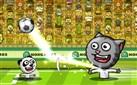 Hayvanların Futbol Maçı