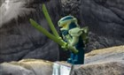 Ninjago İmparatorluk Savaşçısı