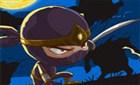 Öfkeli Ninja