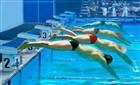 Yüzma Yarışı